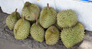 Durian0